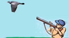 Foires et salons : «Nous ne sommes pas des pigeons!»